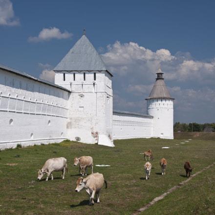 У стен Макарьевского монастыря