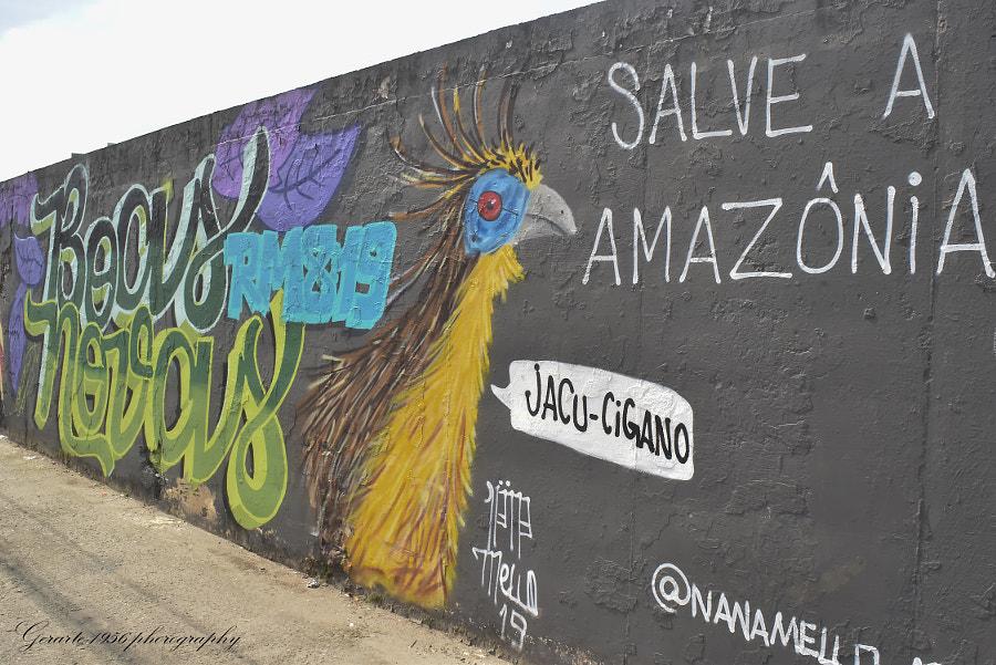 Salve a Amazonia... by Geraldo  da Silva Filho on 500px.com