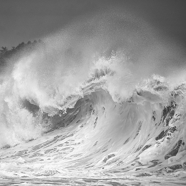 Photograph Breath by Hengki Koentjoro on 500px