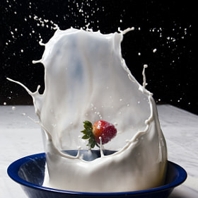 Still Life in High Speed by Paul Howard (paulmhoward)) on 500px.com