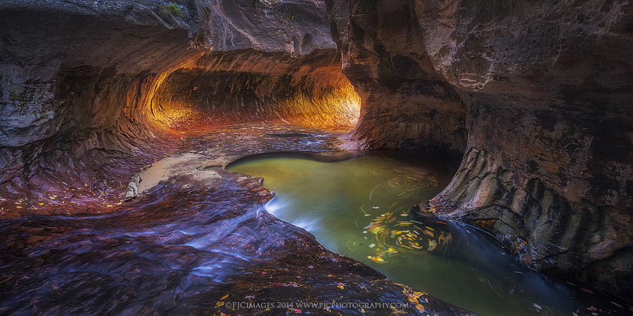 Follow the Light by Peter Coskun Nature Photography  on 500px.com