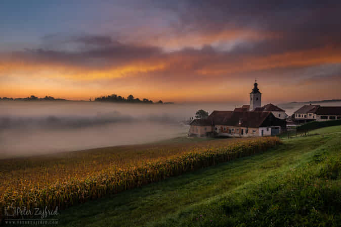 On the foggy morning by Peter Zajfrid