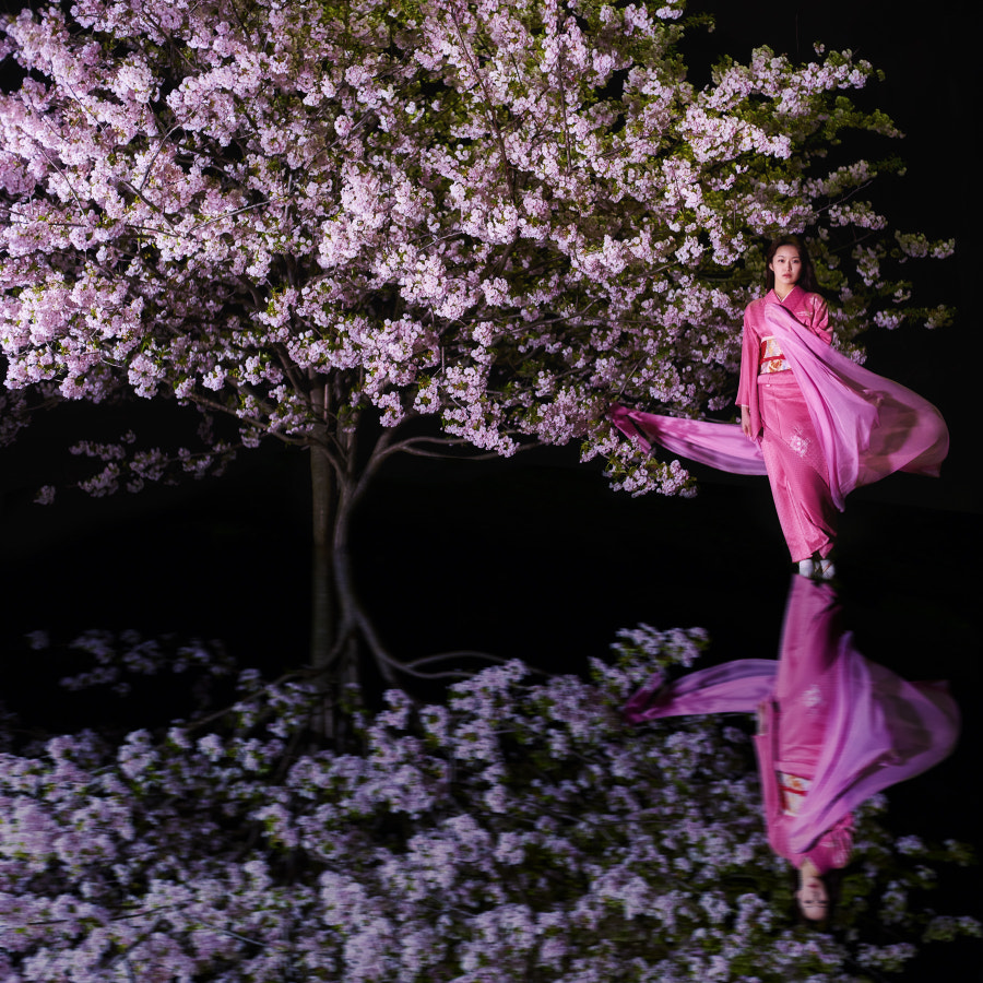 Sakura's color