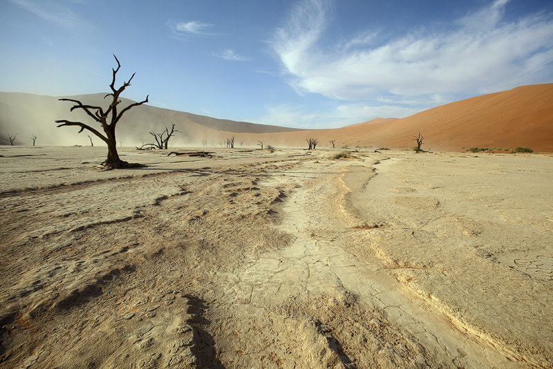 Photograph Dooievlei - Namibia by Hannes Thirion on 500px
