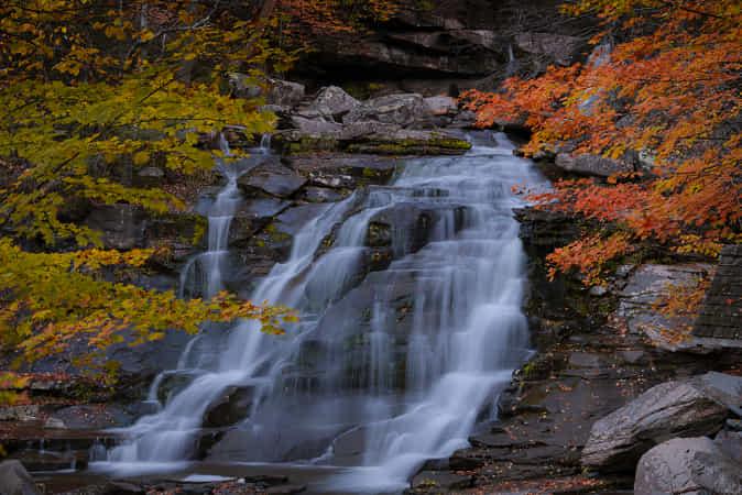 Autumn mood by David Dai