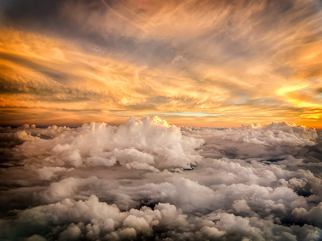 Photograph cruising above- by paul newell on 500px