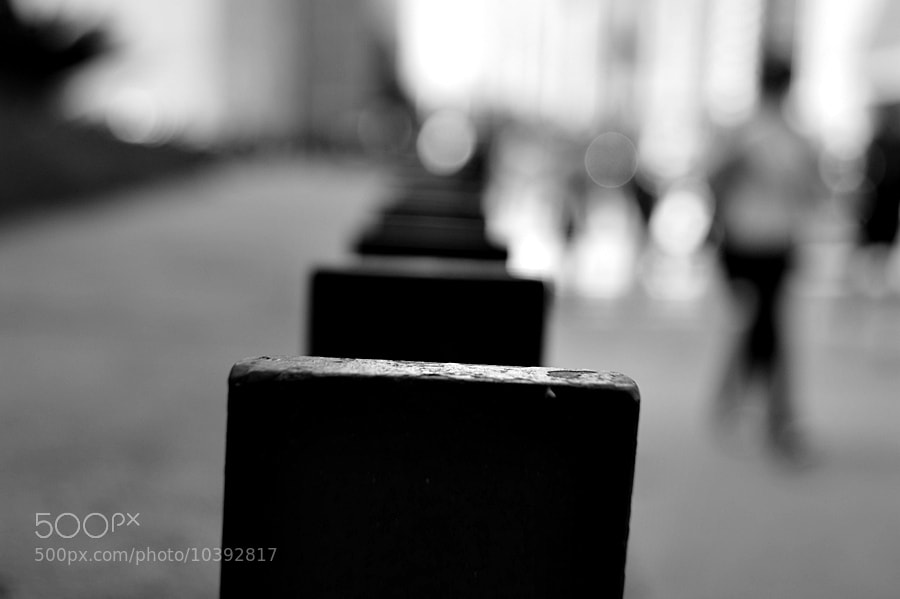 Photograph Untitled by Michele Cabral on 500px