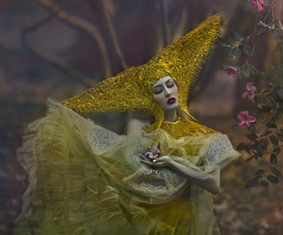 * by Agnieszka Lorek on 500px.com
