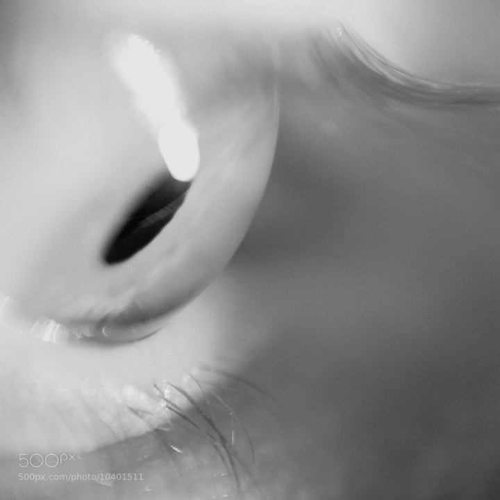 Photograph Eye by Conal Thomson on 500px