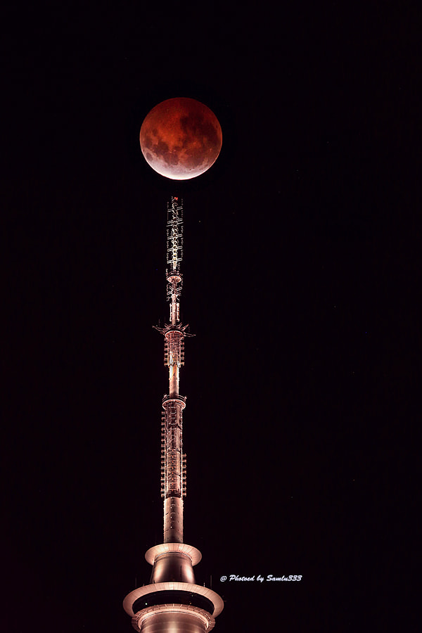 Photograph Blushing Moon Lady: Please come down the ladder. by Sam Lu on 500px