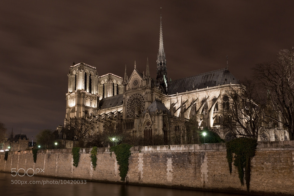 Photograph Notre Dame de Paris by Sebastien Papon on 500px