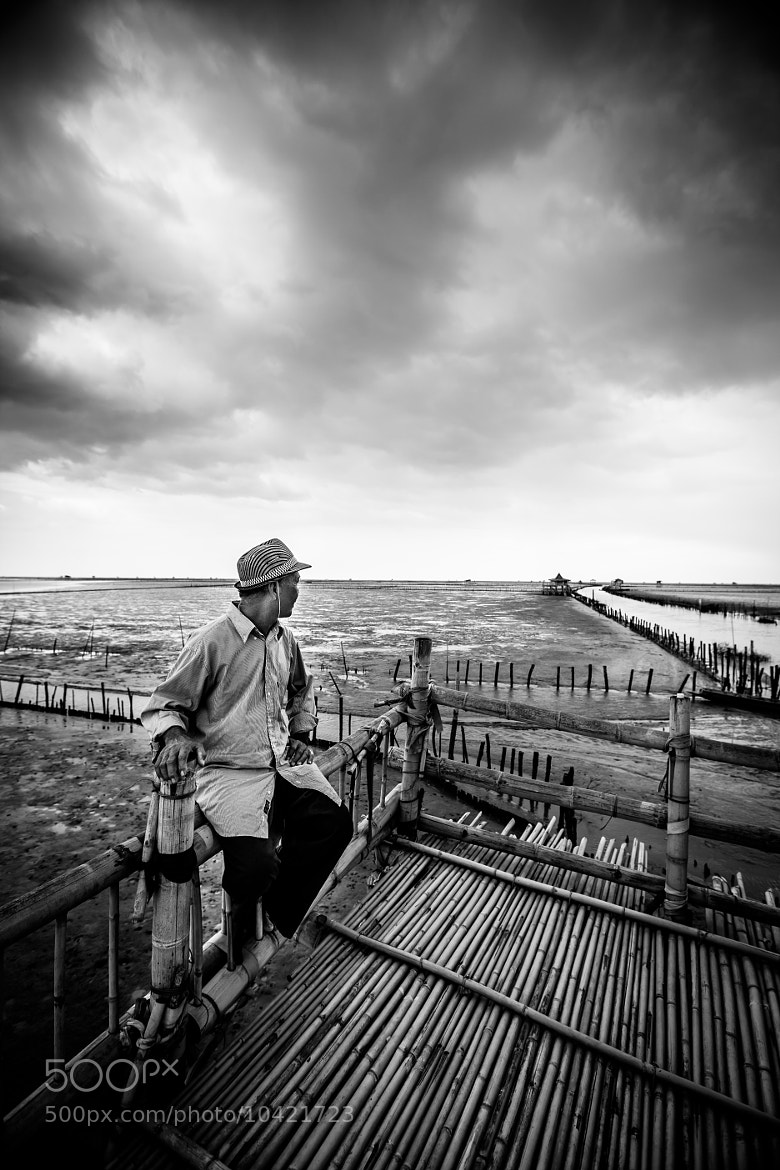 Photograph Oyster Farmer by Oat Vaiyaboon on 500px