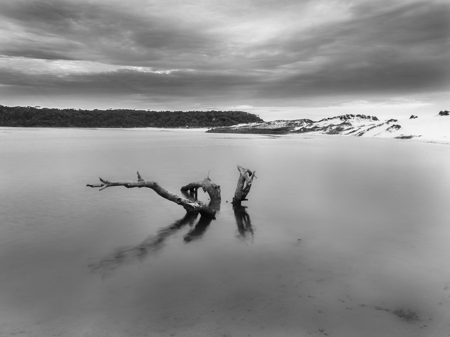 Photograph Lake Conjola B&W NSW Australia by Travis Chau on 500px