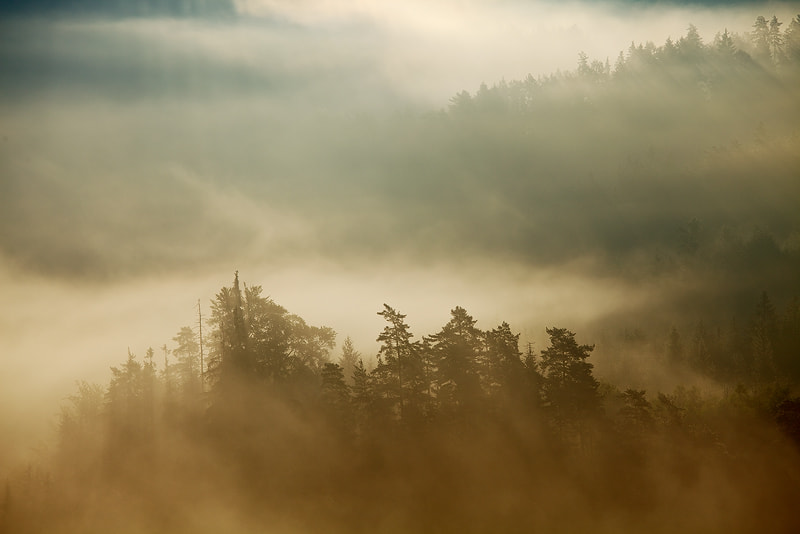 Photograph Morning Atmosphere by Martin Rak on 500px