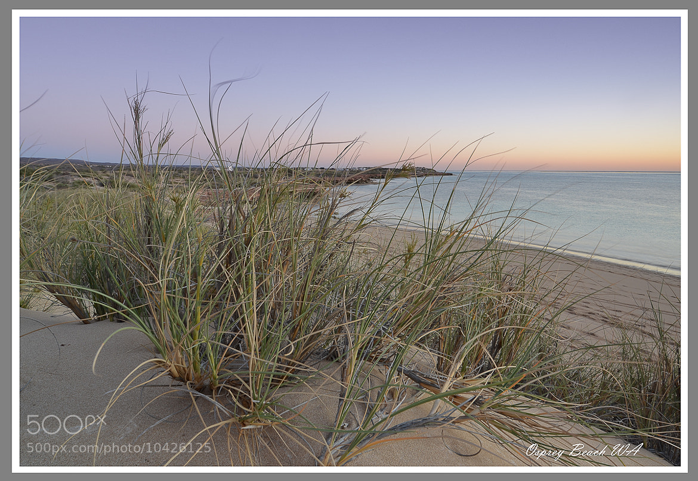 Photograph Osprey Beach by Graeme Gordon on 500px