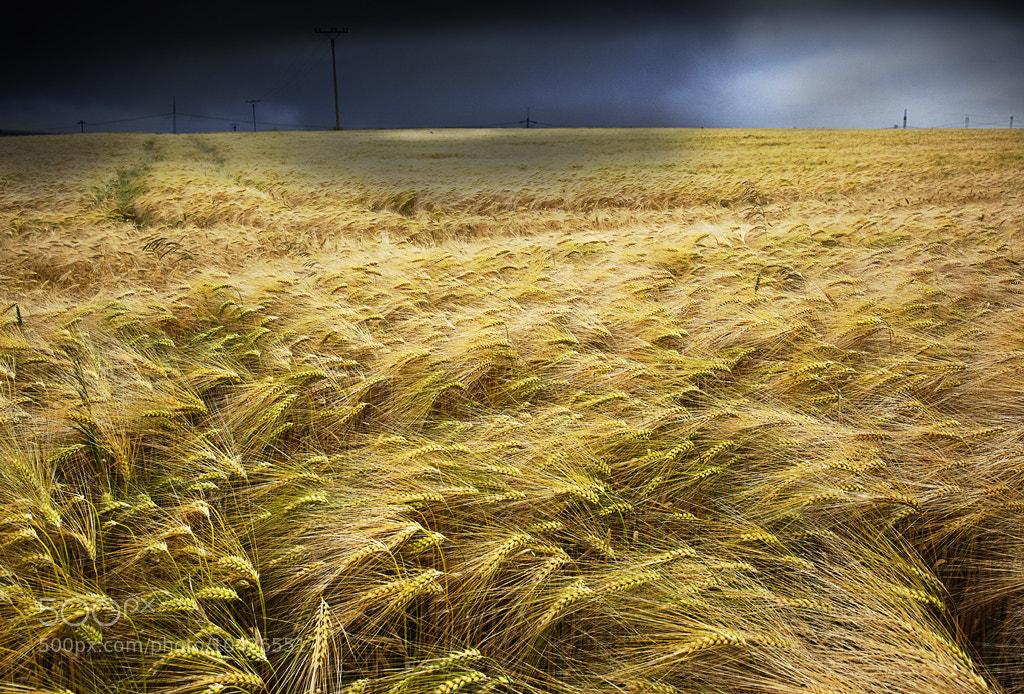 Photograph Storm.  by Olga Shiropaeva on 500px