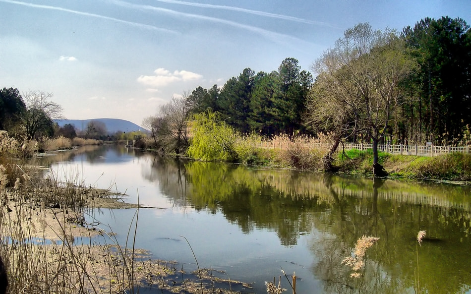 Photograph reflections on the river by Mustafa  Gül on 500px