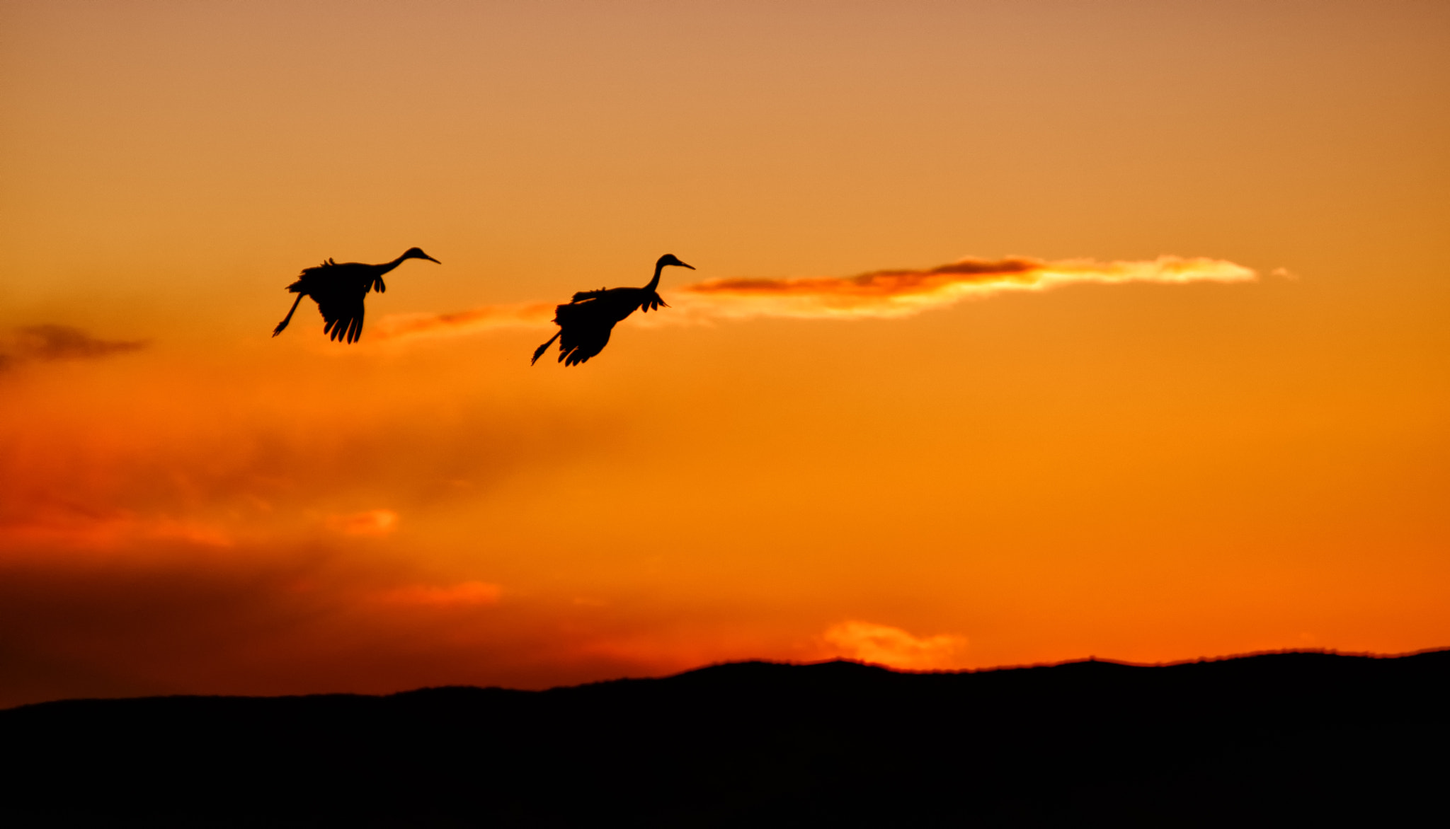 Photograph Flaps Down by Duane Bender on 500px