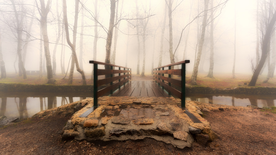 Destiny Awaits by Pedro Quintela on 500px.com