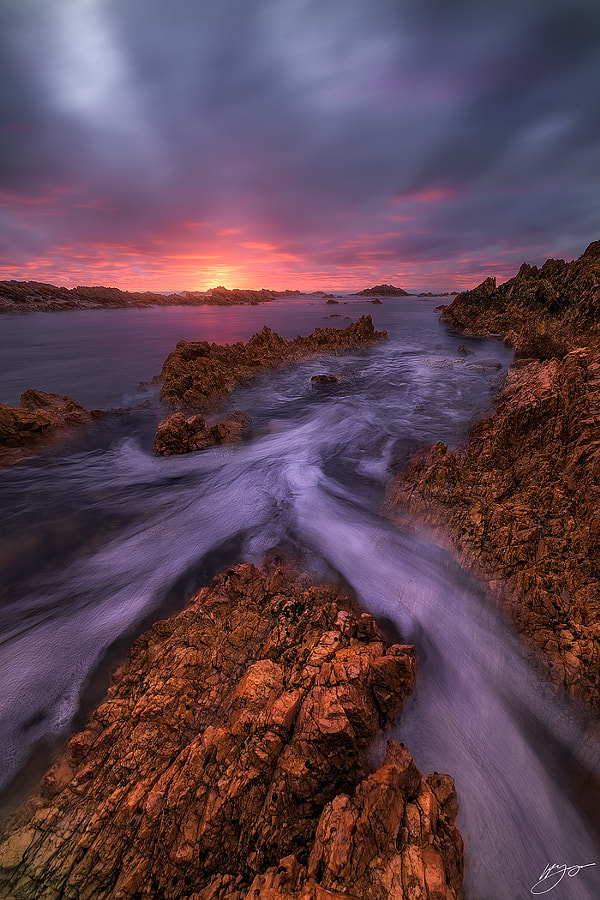 Midas Touch by Hillary Younger on 500px.com
