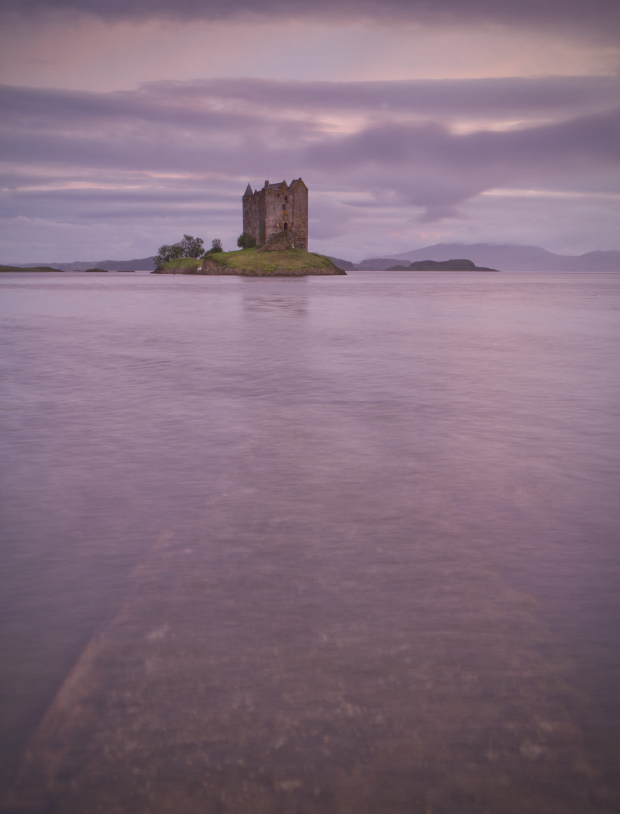Photograph Lavender Castle by Martin Currie on 500px