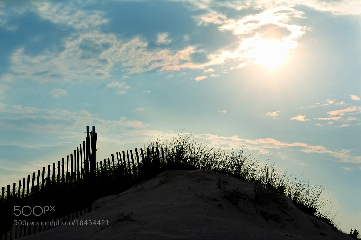 Photograph at the dunes by Monica Murphy on 500px