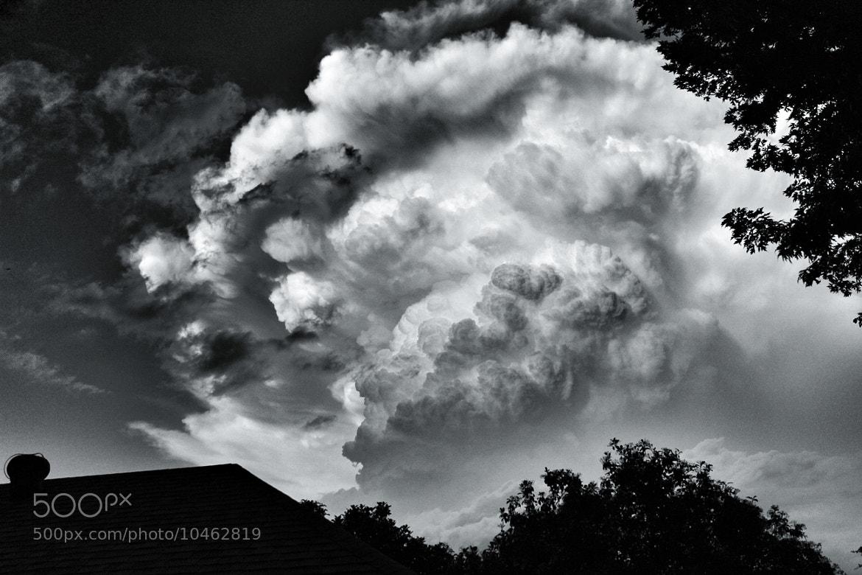 Photograph Tremble by Brian Hamilton on 500px