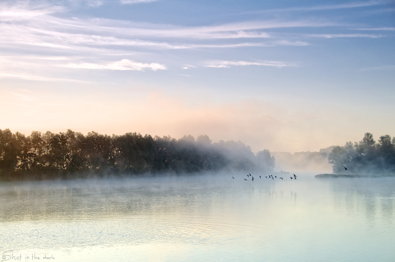 Photograph Morning mist by Peter Bijsterveld on 500px