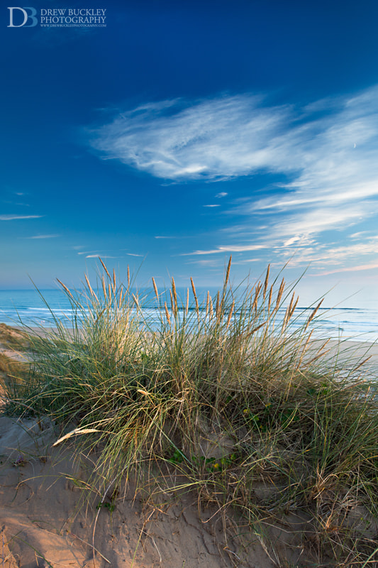 Photograph Freshwater West Dunes Golden Hour by Drew Buckley on 500px