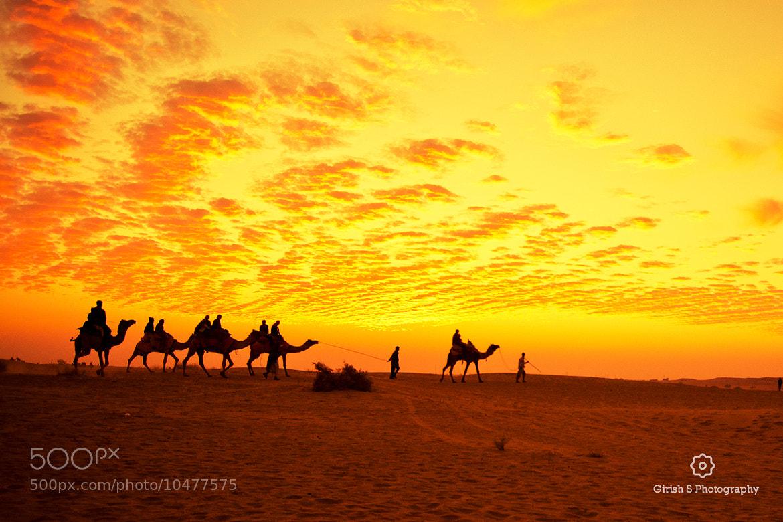 Photograph Golden Moments in the Golden Desert !!! by Girish Suryawanshi on 500px