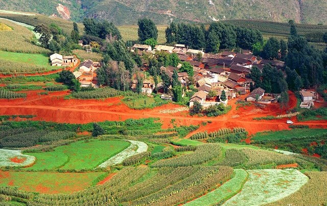 Photograph tomato and flower vally village by Sandeep  Rana on 500px