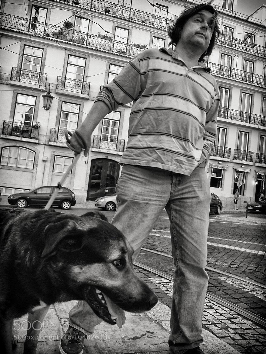 Photograph Just another walk with the dog… by Fernando Coelho on 500px