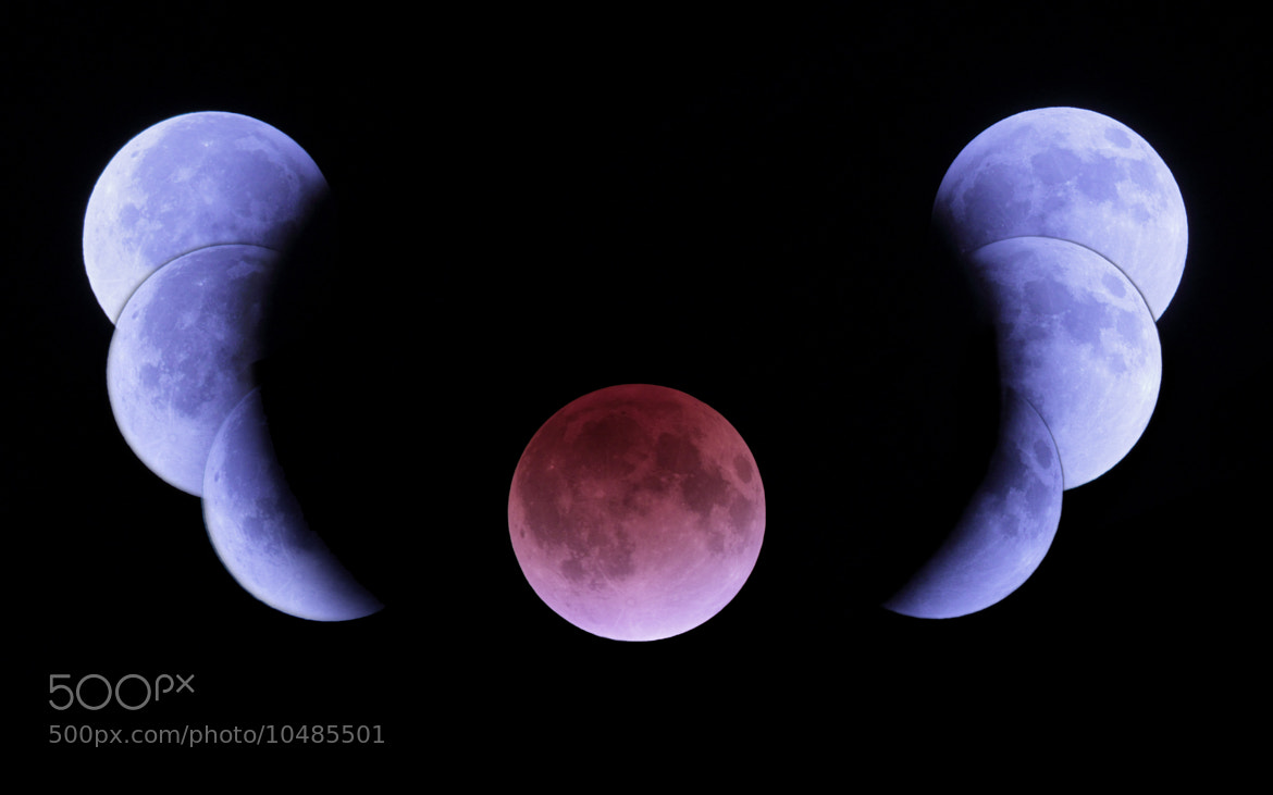 Photograph 月読(December, 2011   Total eclipse of the moon ) by hirosima munetaka on 500px