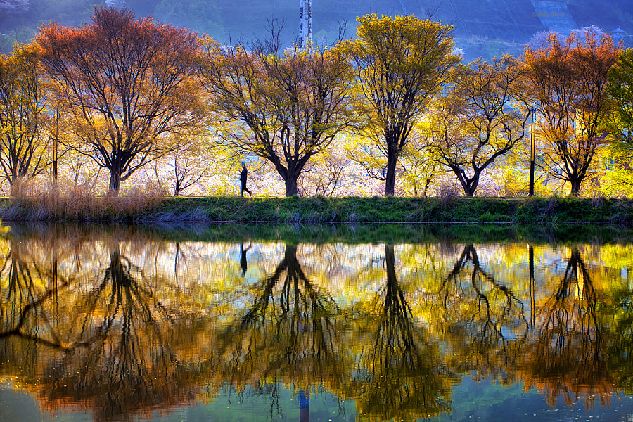 Spring reflection by Jaewoon U on 500px.com