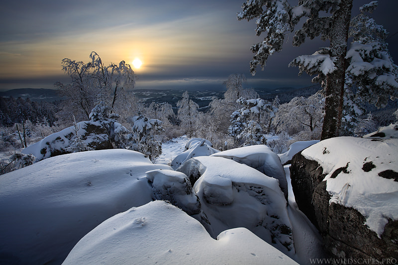 Photograph Winter Marvels by Maxime Courty on 500px