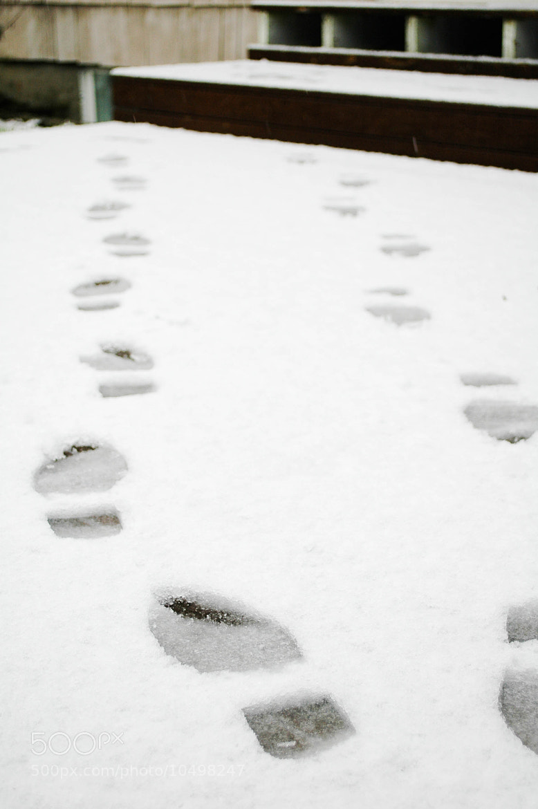 Photograph footsteps by alison christiana on 500px