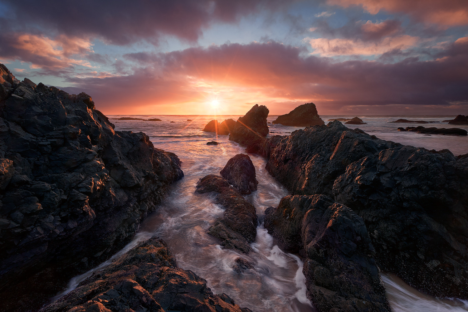 Photograph Ode To A Sunstar by Miles Morgan on 500px