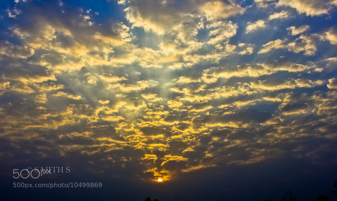 Photograph Morning Bliss by Sajith S on 500px