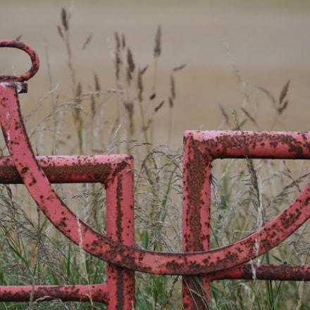 Smiling gate