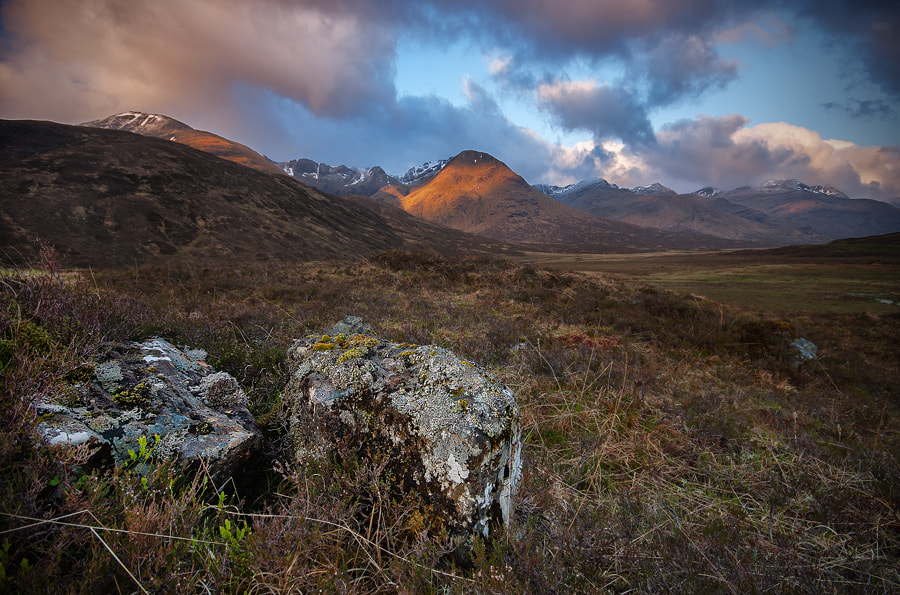 Photograph Scottish Morning by Mark Broughton on 500px