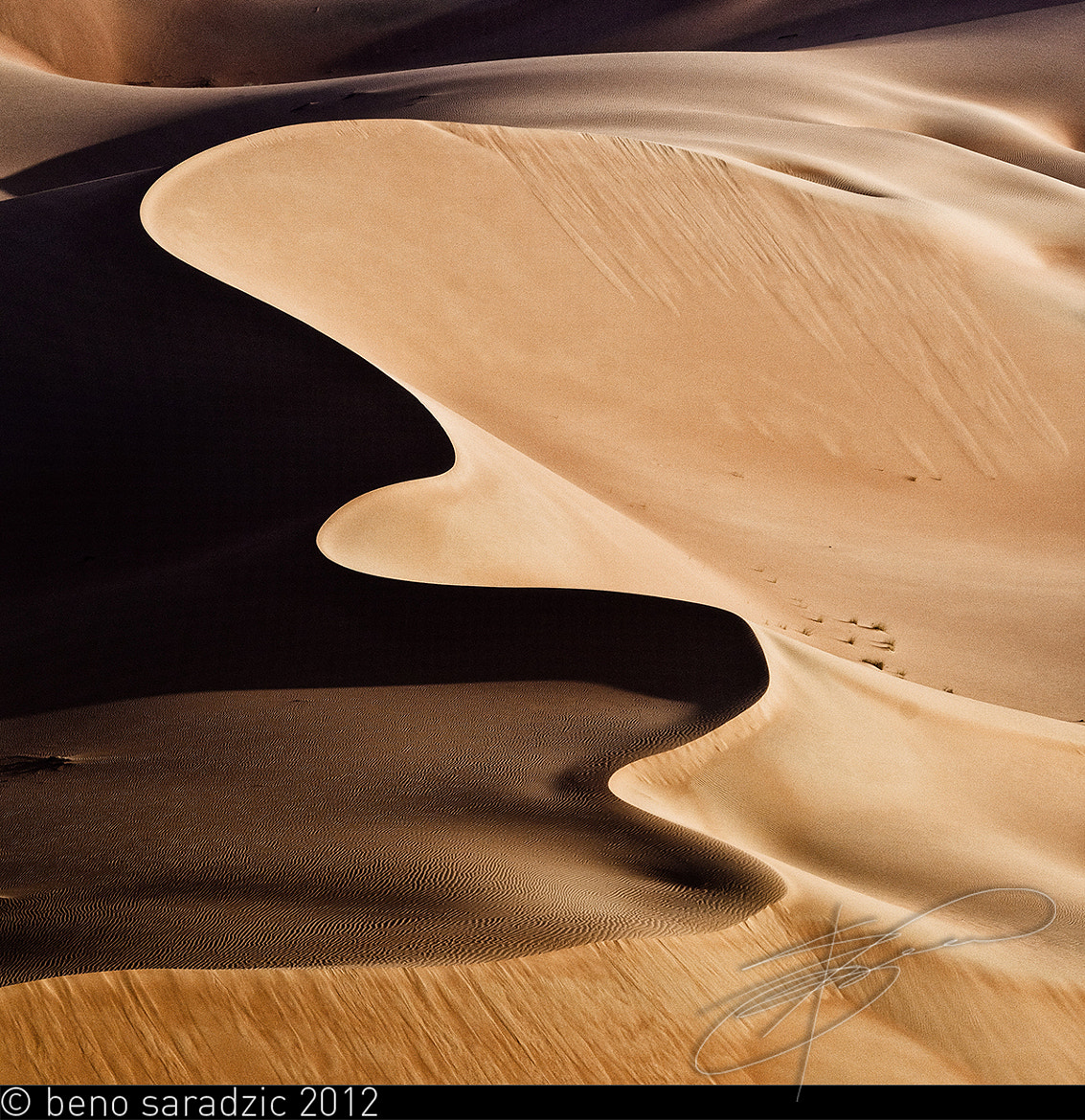 Photograph Desert Symphony by Beno Saradzic on 500px