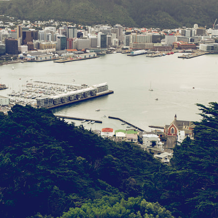 Puerto de Wellington