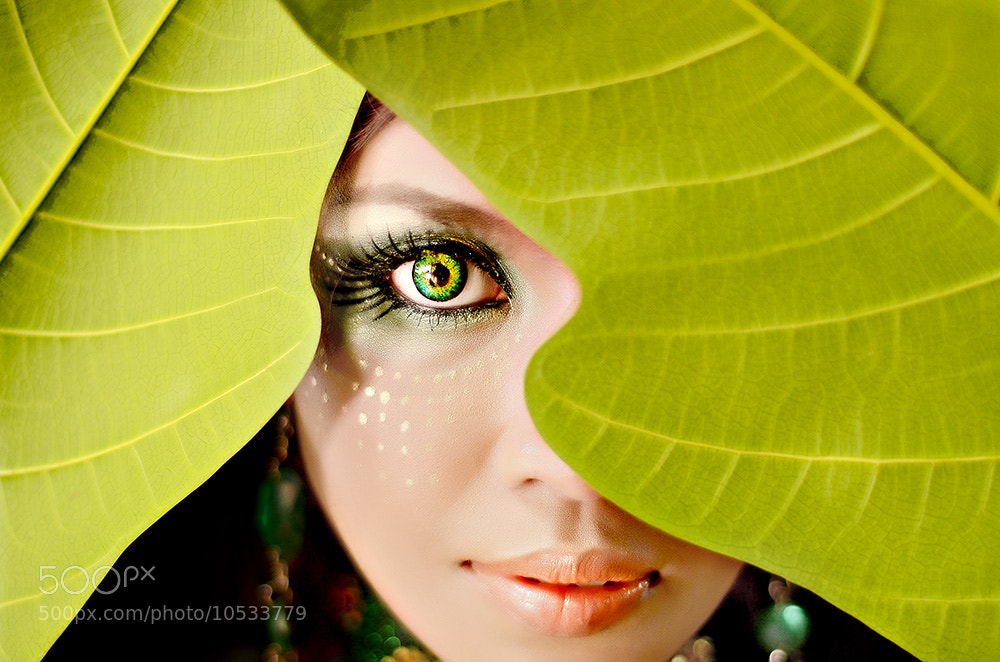 Photograph Behind the leaves.... by Joni Alir on 500px