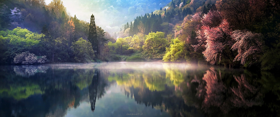 Dream of Spring by Jaewoon U on 500px.com