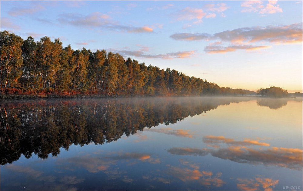 Photograph Morning has broken by Elmar Weiss on 500px