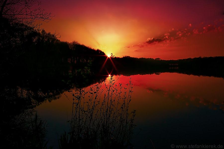 Sun in the Evening