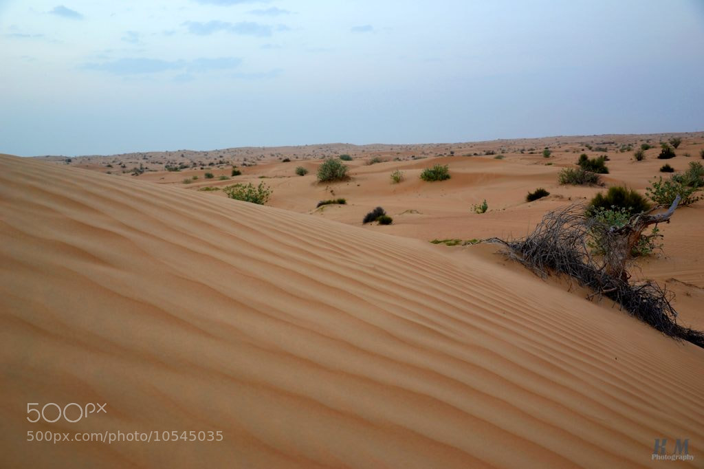 Photograph Desert by Kevin Martin on 500px
