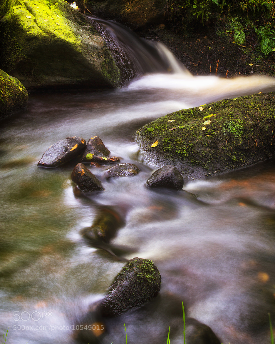Photograph Padley Gorge by Sean Morgan on 500px