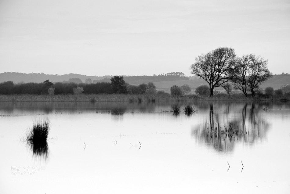 Photograph Feast of Silence by Gabriel (BIEL) on 500px