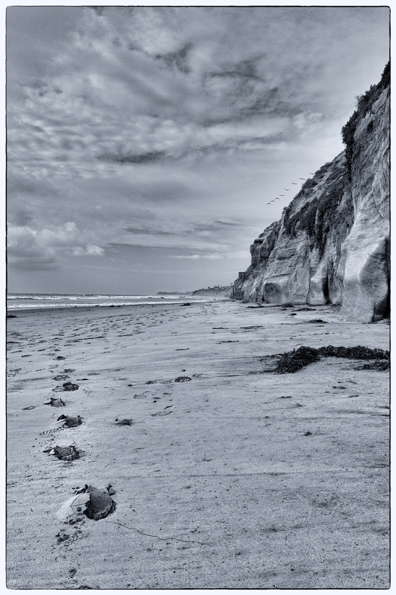 Photograph Cloudy Beach by Tony L on 500px